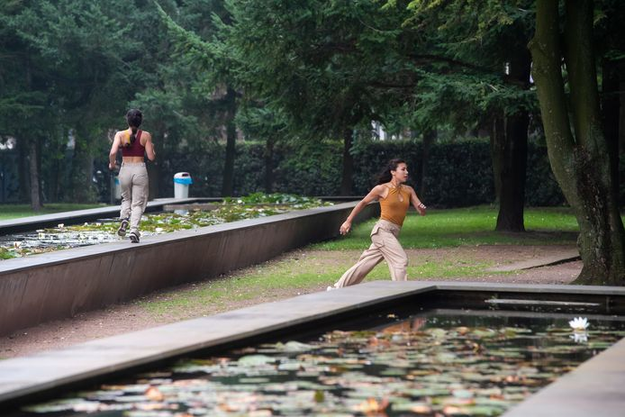 Impressie van de danswandeling die onder andere plaats vond in de Interpolis-tuin.