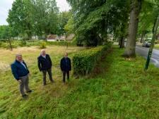 VVD Oisterwijk biedt uitweg op de Merodelaan: 'Laat omwonenden weitje met bouwtitel kopen'