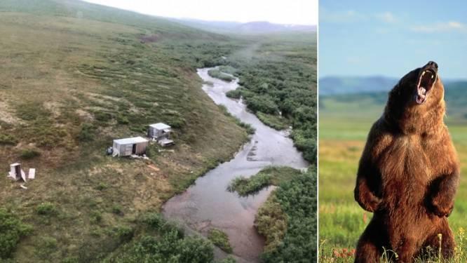 Zoals in de film: man wordt dagenlang aangevallen door grizzlybeer in Alaska, tot helikopter SOS-signaal opmerkt