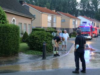 Herstellingswerken aan waterlek volop bezig, bewoners kunnen water afhalen in wijk