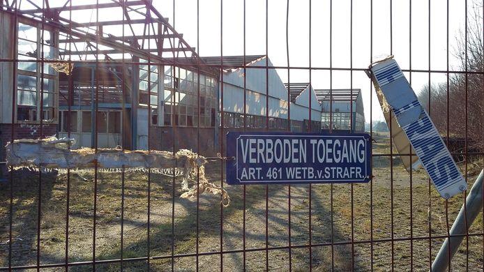 Het toen nog bebouwde voormalige Amac-terrein in 's-Heerenhoek