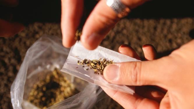 Bijna 300 gram hennep gevonden in huis in Etten-Leur