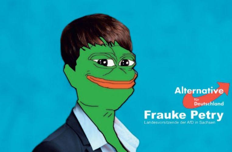 Voormalig AfD-leidster Frauke Petry als Pepe the Frog. Met memes wil de AfD-aanhang  stemmen winnen. Beeld rv