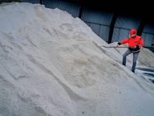 Gemeente Hoeksche Waard geeft strooizout weg om glijpartijen te voorkomen