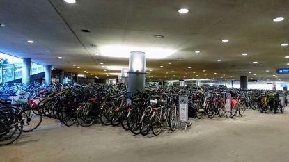 """Antwerps stadsbestuur: """"Stationsbuurt ordelijker door campagne voor fietsparkeren"""""""