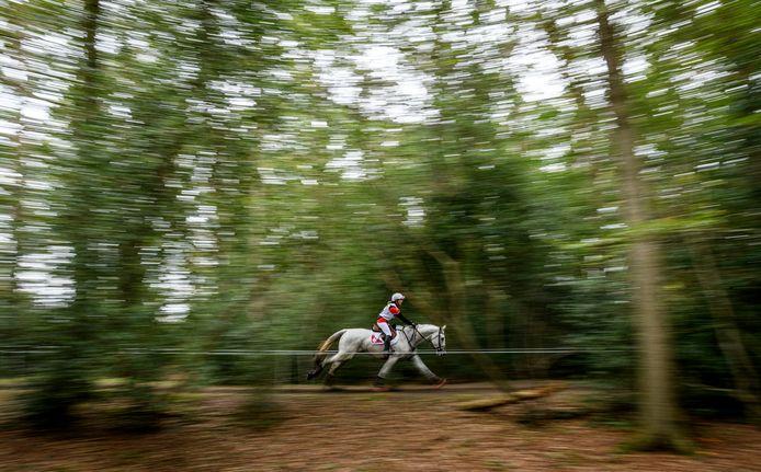 Cross door het bos. Foto ter illustratie.
