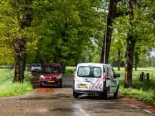 Raalte doet eigen onderzoek naar monumentale bomenlaan Schoonhetenseweg, snoeiwerk kost al een ton