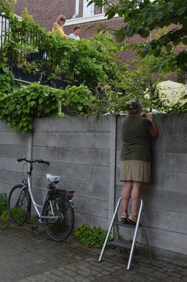 De buurvrouw heeft ook een plekje gevonden om het optreden in de tuin te volgen.
