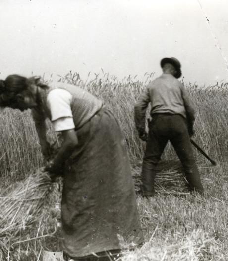 Landbouw moet roer omgooien