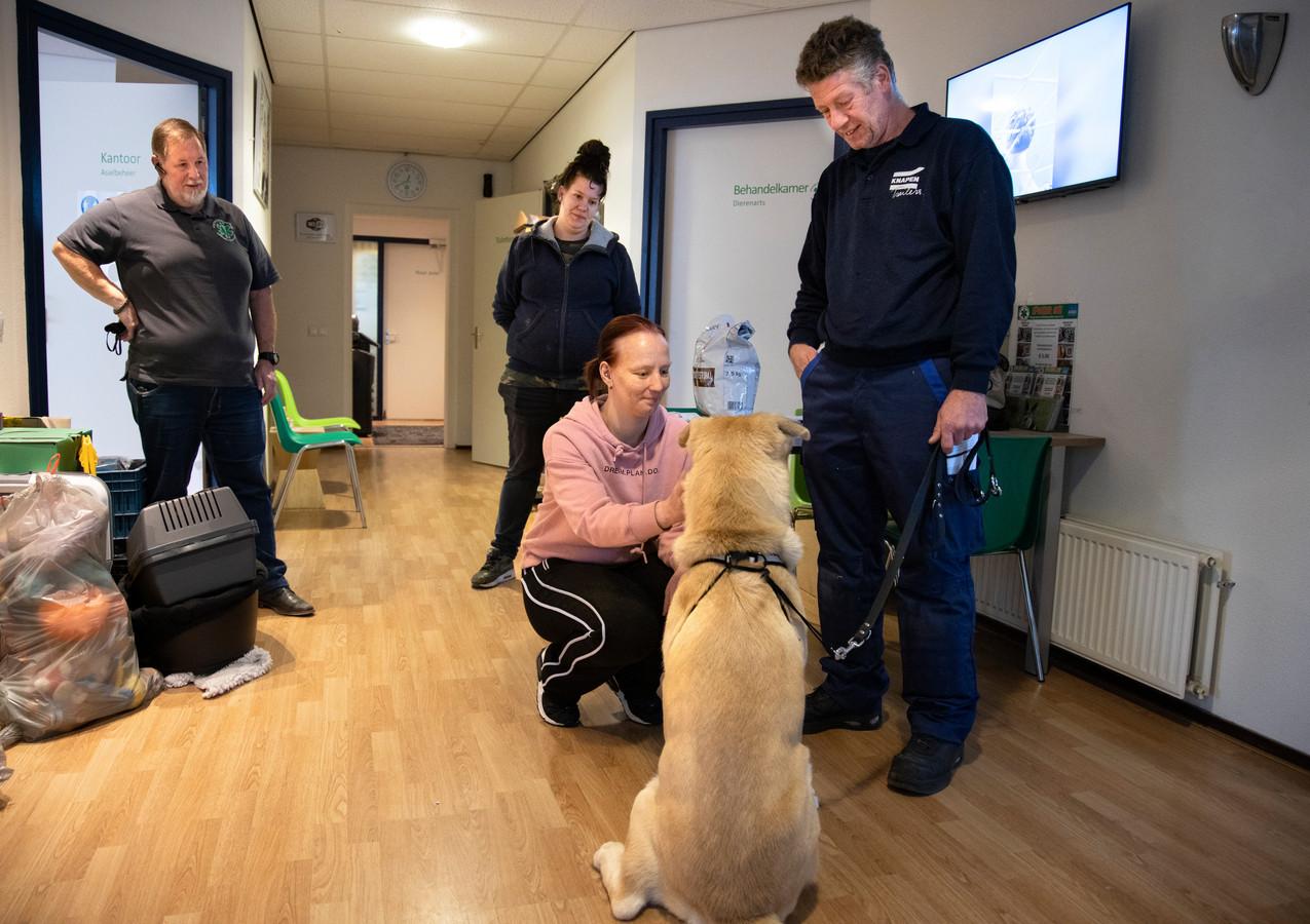 Danny Peters en Sasha Diender adopteren hond Viktor in het Helmondse dierenasiel. Bedrijfsleider Twan Spierings (links) kijkt toe.