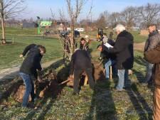 Families planten voorlopig laatste bomen in grond Arboretum Geffen
