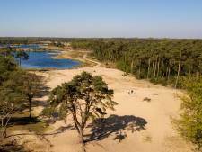 Staycation in Nederland? Vijf globetrotters op avontuur in eigen land