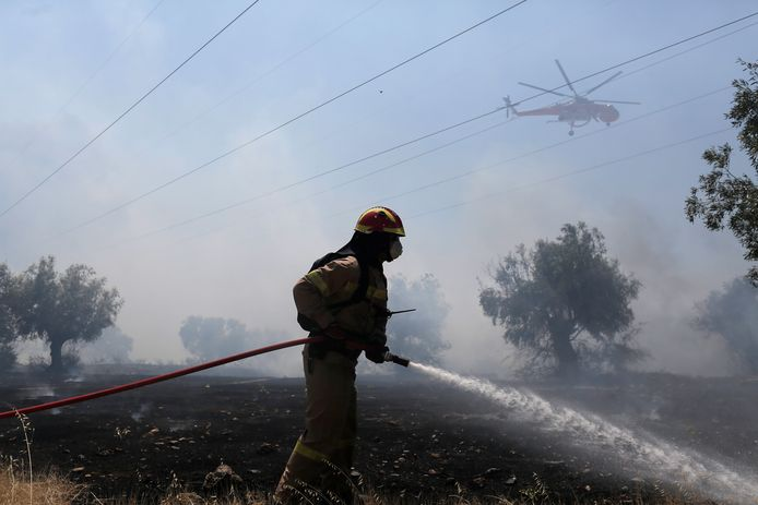 Tientallen Griekse bosbranden onder controle gebracht | Buitenland | hln.be