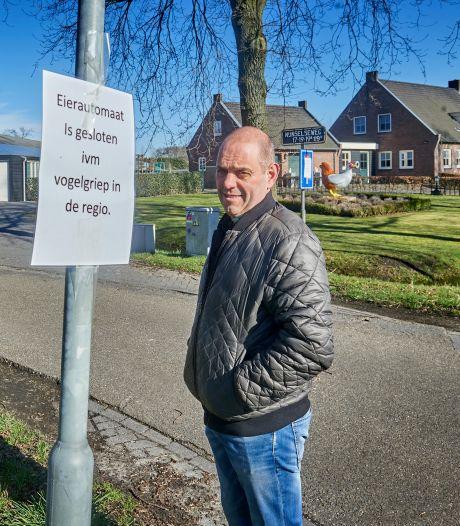Kippenboer Marco voelt impact vogelgriep: 'Dit doet even flink pijn'