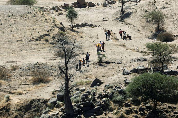 Ethiopiërs ontvluchten te voet de Tigray-regio en lopen naar een vluchtelingenkamp over grens met Sudan.