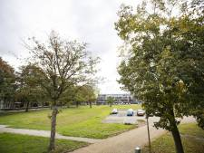 Geen 'blik op blik' bij parkeren in Wierdense Klomphof