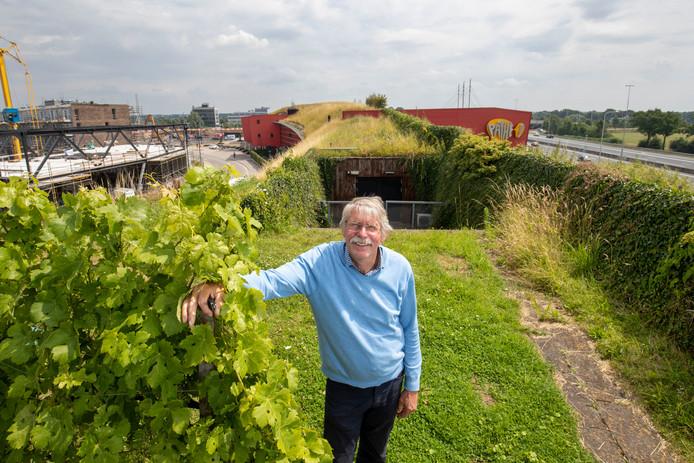 Gerben Kuipers bij zijn wijngaard Zuid-Veluwe op de geluidswal langs de A12.