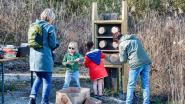 Milieuverenigingen en gemeente vragen inwoners van Maarkedal om bijenplekjes te maken