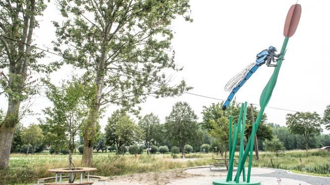 Zeven meter hoge libelle is blikvanger op rustplaats Drie Scheppers in Parike