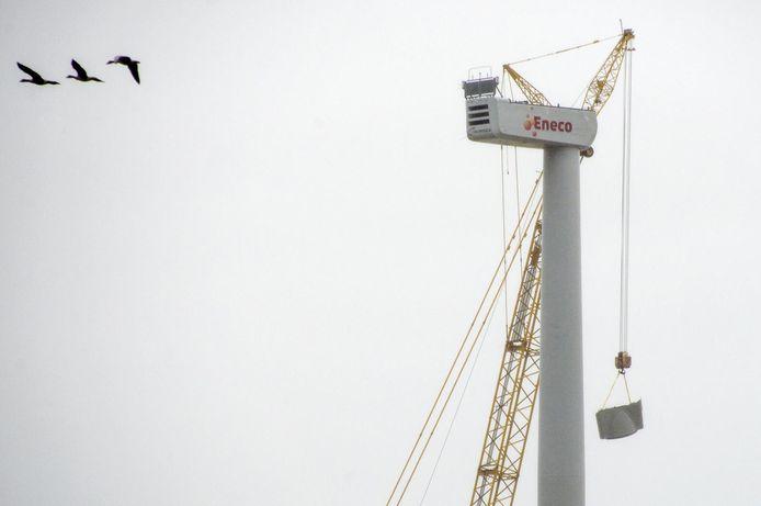 Een windmolen van Eneco wordt gebouwd.