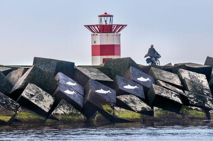 Het eerbetoon voor de vijf watersporters die een jaar geleden zijn omgekomen bij het surfdrama in Scheveningen.