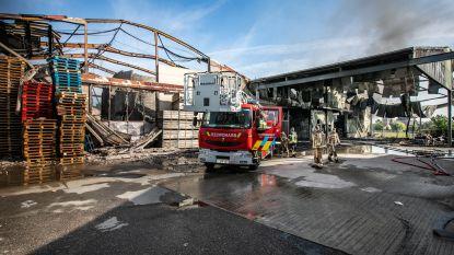 Geen asbest in tuinen van aanpalende woningen na brand in Zepperse fruitloods