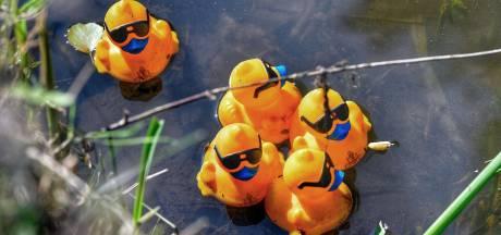 Zonovergoten editie van Duck van Toor race in Valkenswaard