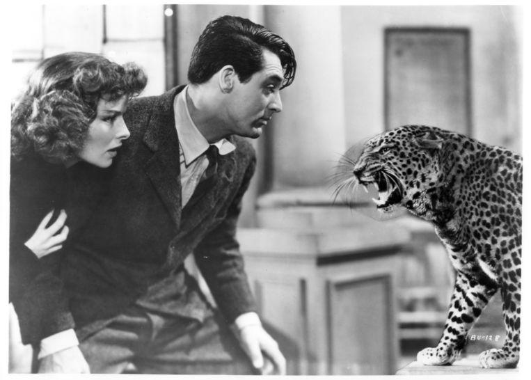 Katharine Hepburn en Cary Grant in Bringing Up Baby. Beeld