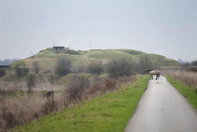 De weg naar Fort Pannerden in Doornenburg. Foto: Rolf Hensel