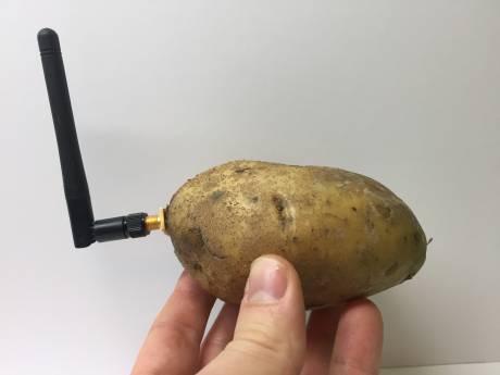 Il piège le salon des nouvelles technologies avec une... patate connectée
