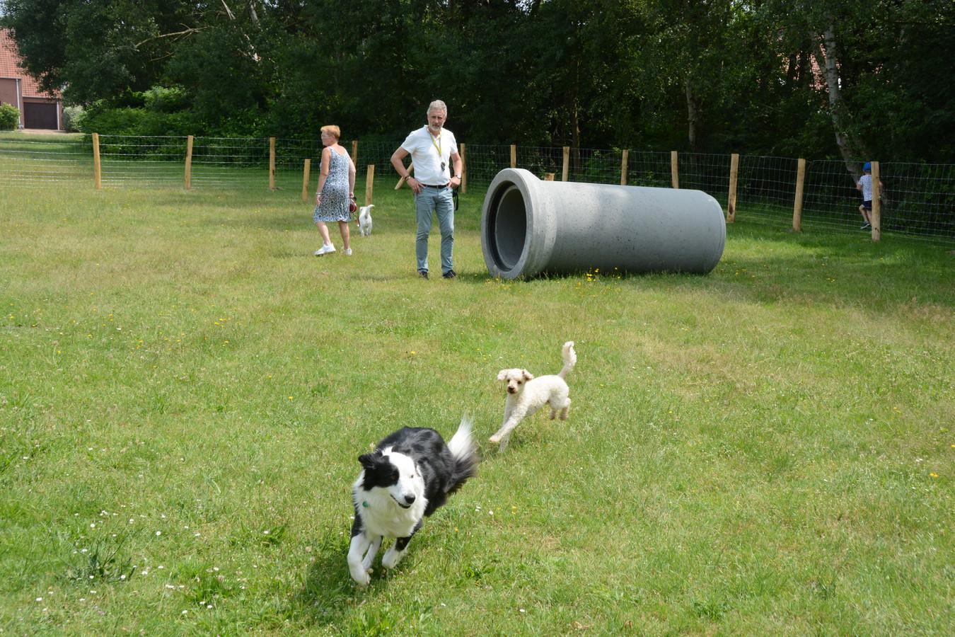 Voorbeeld van een hondenloopzone met speeltoestellen (illustratiebeeld).
