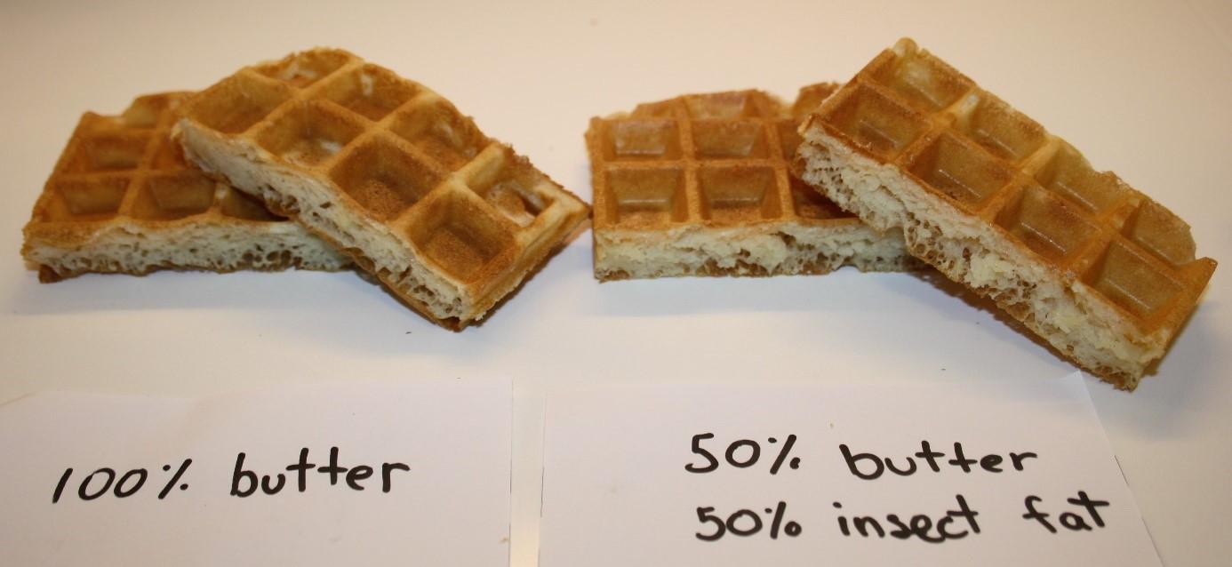 Wafels met en zonder insectenvet: ze zien er hetzelfde uit en zouden ook hetzelfde smaken.