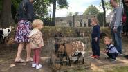 Kinderen genoten van de dieren op de jaarmarkt