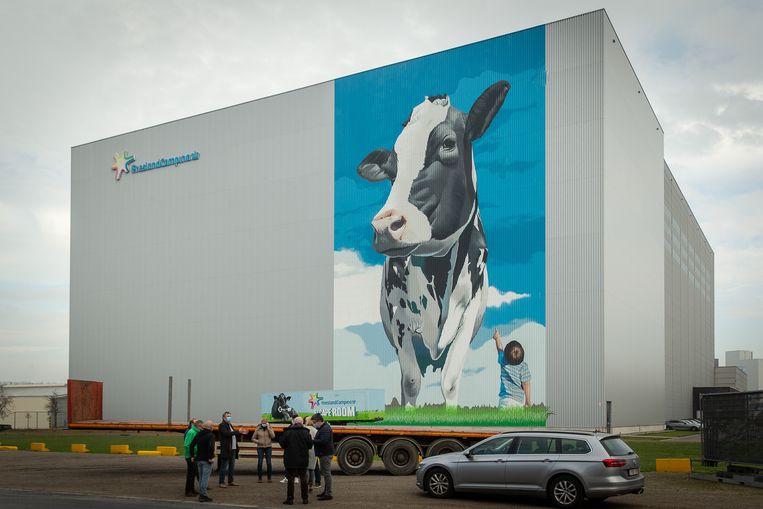 Kantoor FrieslandCampina in het Belgische Aelster. Beeld BELGA