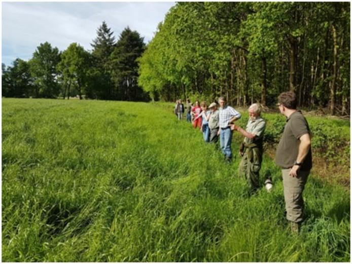 De jagers lopen op lijn door het weiland