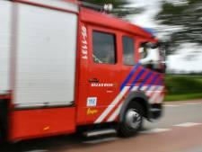 Auto brandt uit in Assen, mogelijk sprake van brandstichting