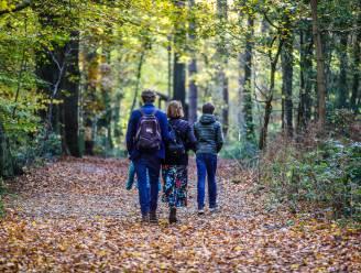 Ook in bossen van Knokke-Heist zijn steeds meer 'wildkakkers' aan het werk