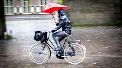 Opnieuw felle rukwinden en veel regen: code geel afgekondigd in heel het land