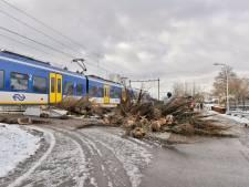 Treinen tussen Den Bosch en Tilburg rijden weer normaal na ongeluk bij Udenhout