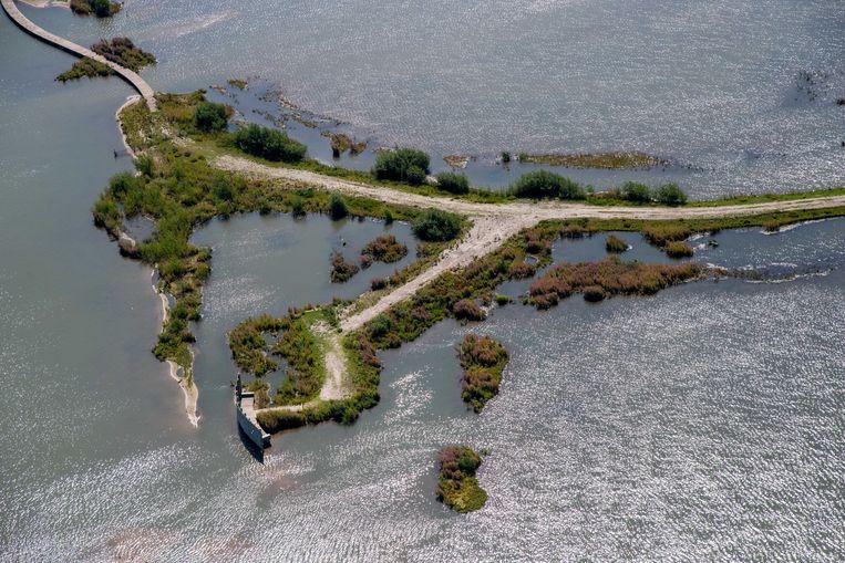 Luchtfoto van de Marker Wadden. Het gebied is volgens Natuurmonumenten een van de grootste natuurherstelprojecten in Europa, bedoeld om de biodiversiteit terug te brengen. Het hoofdeiland is toegankelijk voor publiek. Beeld ANP