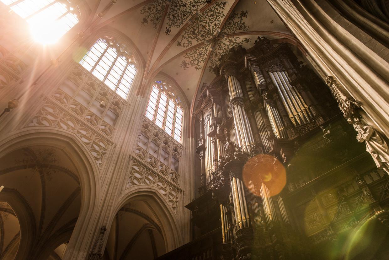 Den Bosch: grote orgel, Sint-Janskathedraal.   Beeld Eva Faché