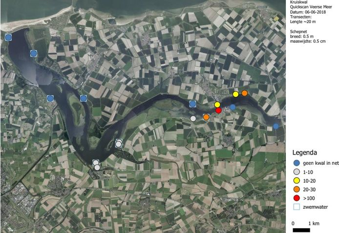 Locaties waar de kwal (niet) is aangetroffen.