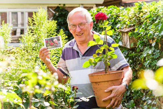 Henk Boot (68), zoon van onlangs overleden Ton Boot (98) uit Giessenburg met in zijn arm een stek van de heerlijk geurende roos van zijn vader.