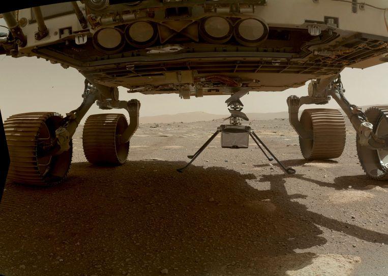 Eerste week april: Marsdrone Ingenuity wordt uit de 'buik' van rover Perseverance getakeld.  Beeld AFP