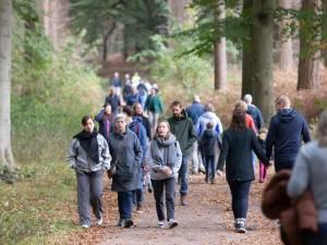 Dit zijn de 5 mooiste bossen van de provincie Utrecht