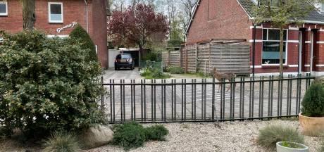 Verbazing in Hengelose woonwijk: hé, daar loopt een ree!