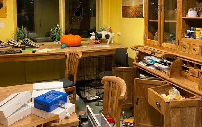 Inbrekers hebben het kantoor van de kinderboerderij in het Horsterpark in Duiven overhoop gehaald.