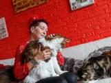 Deze 5 West-Brabanders hebben veel, véél huisdieren: 'Hoeveel katten ik heb? Ik ben gestopt met tellen'