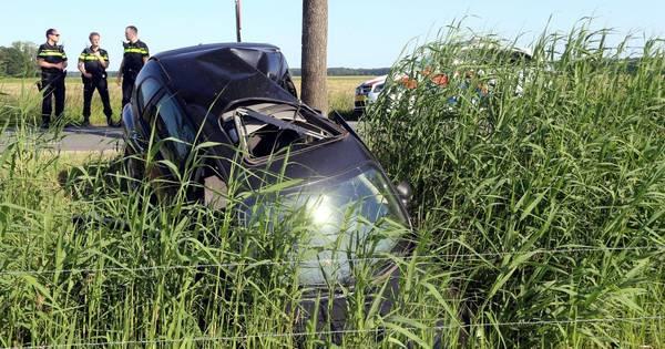 Automobilist opgepakt na aanrijding met boom in Cromvoirt.