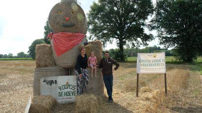 Grote stropoppen vragen respect voor de boerenstiel